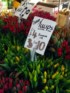 Dutch tulips at Columbia Rd Flower Market