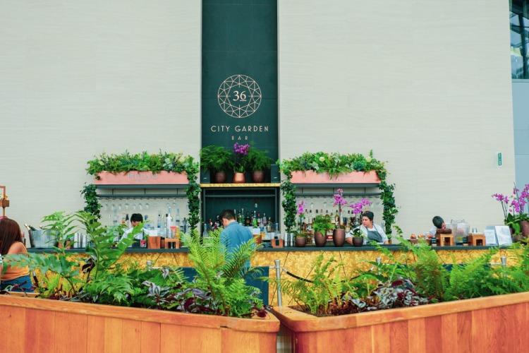 Sky Garden London bar