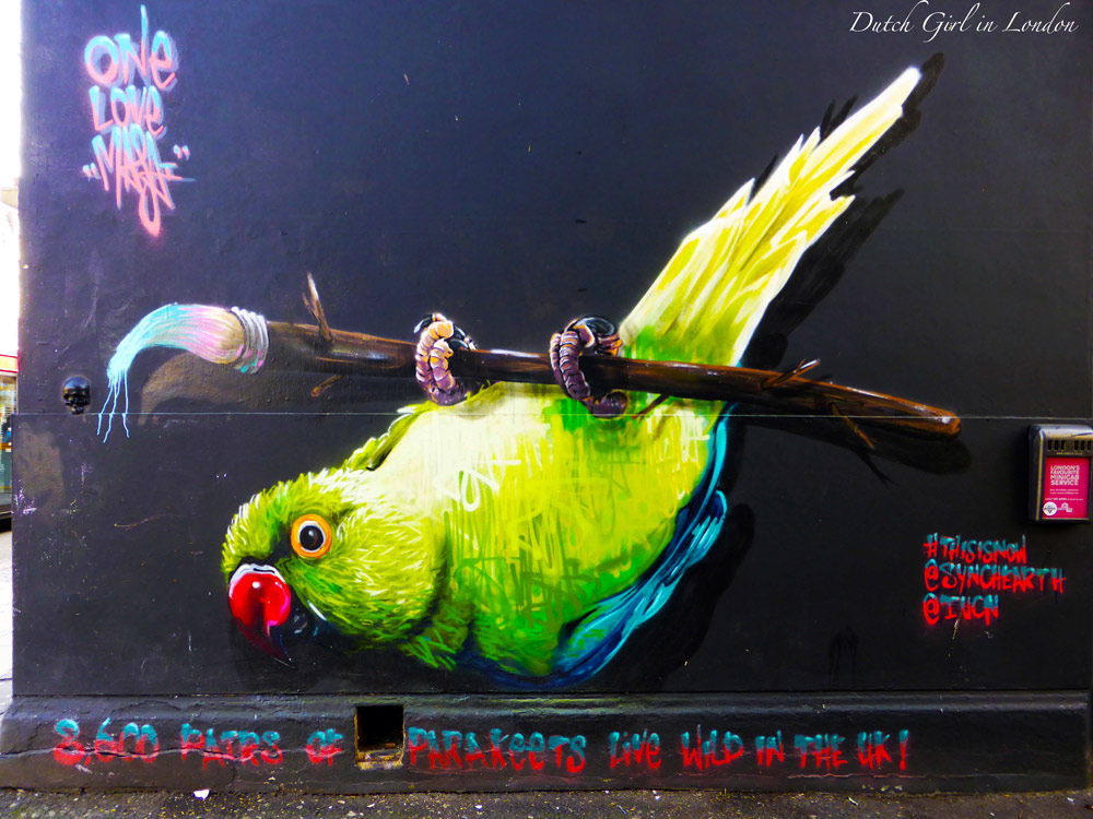 parakeet by Louis Masai who paints (near) extinct animals