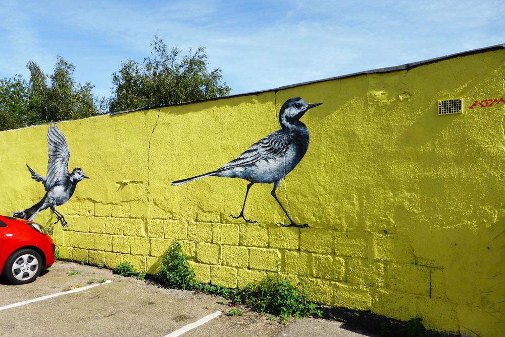 street art of birds by ATM in Walthamstow