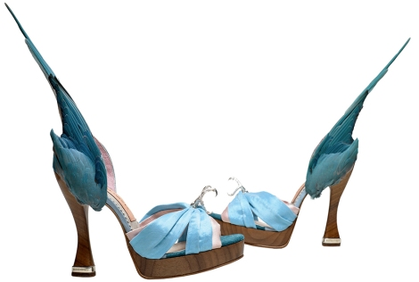 caroline groves parakeet shoes v&a