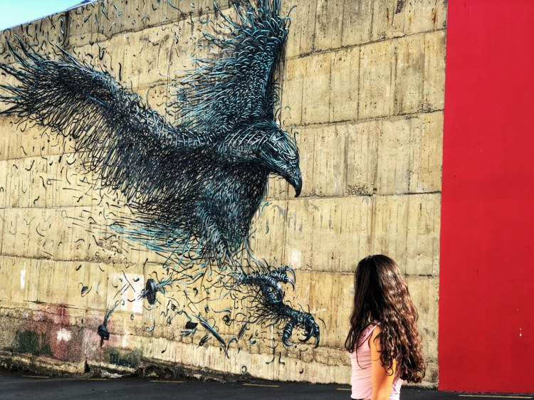 Dunedin-New-Zealand-street-art-trail