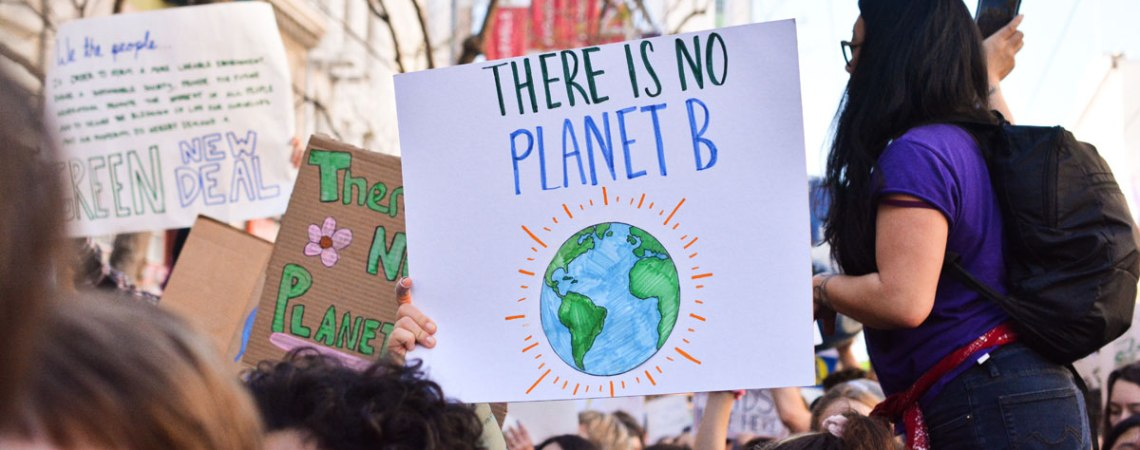 climate strike signs
