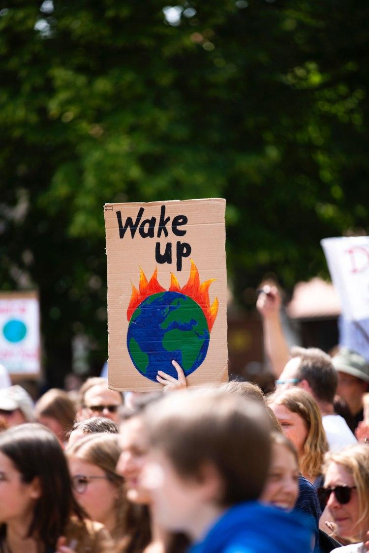 global climate strike sign saying 'Wake up'