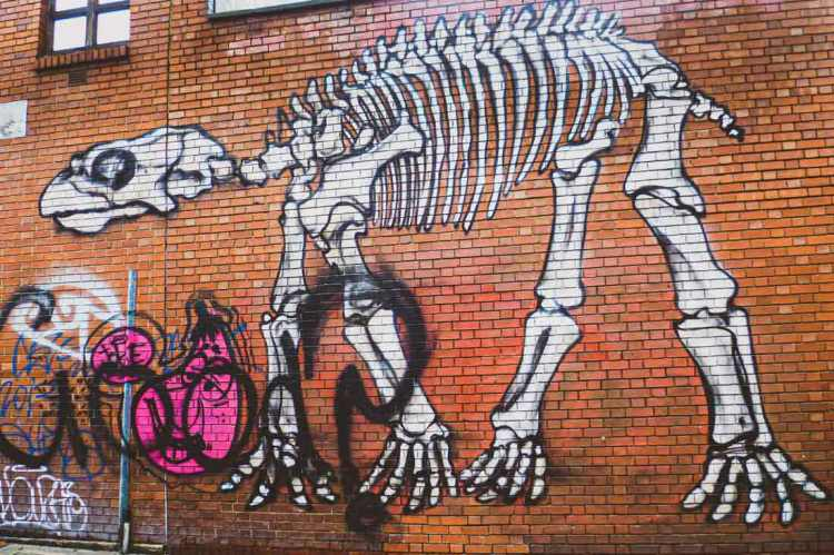 ROA street art of a dinosaur skeleton in Shoreditch