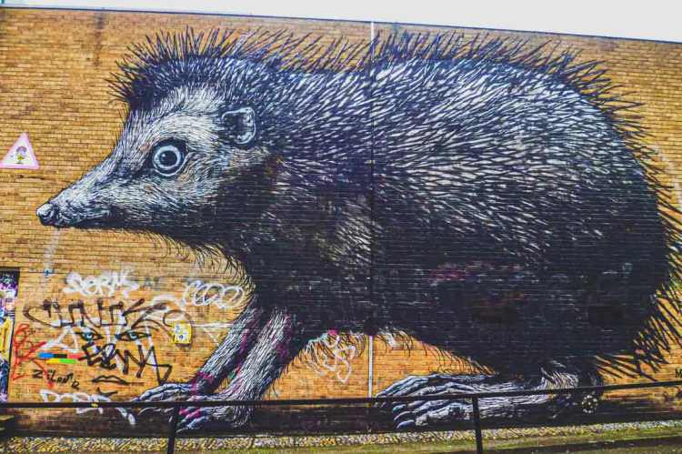 ROA street art of a giant hedgehog on Ebon Street