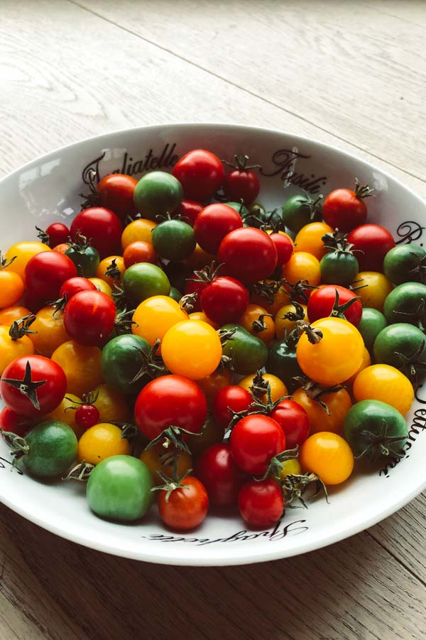 plate filled with homegrown tomatoes, yellow, red and some still green