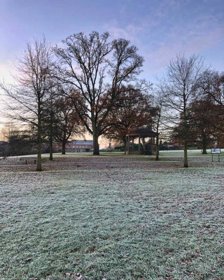 view of snowy grounds at local park during a morning walk in an effort to combat winter depression