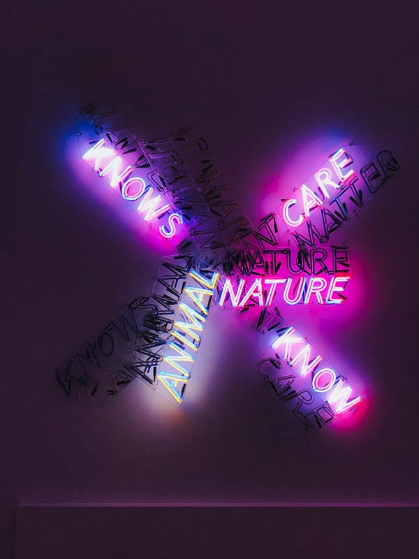 Bruce Nauman exhibition at Tate Modern December 2020